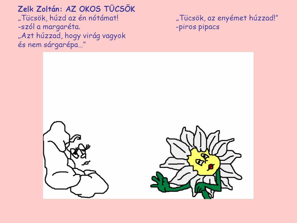 """Zelk Zoltán: AZ OKOS TÜCSÖK """"Tücsök, húzd az én nótámat! """"Tücsök, az enyémet húzzad!"""" -szól a margaréta. -piros """"Azt húzzad, hogy virág vagyok és nem"""