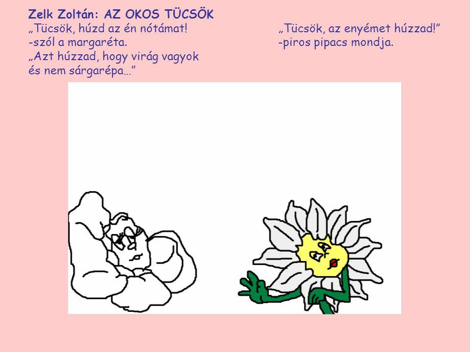 """Zelk Zoltán: AZ OKOS TÜCSÖK """"Tücsök, húzd az én nótámat! """"Tücsök, az enyémet húzzad!"""" -szól a margaréta. -piros pipacs """"Azt húzzad, hogy virág vagyok"""