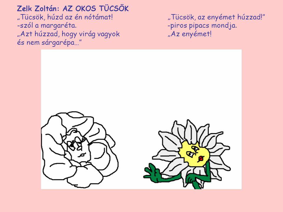 """Zelk Zoltán: AZ OKOS TÜCSÖK """"Tücsök, húzd az én nótámat! """"Tücsök, az enyémet húzzad!"""" -szól a margaréta. -piros pipacs mondja. """"Azt húzzad, hogy virág"""