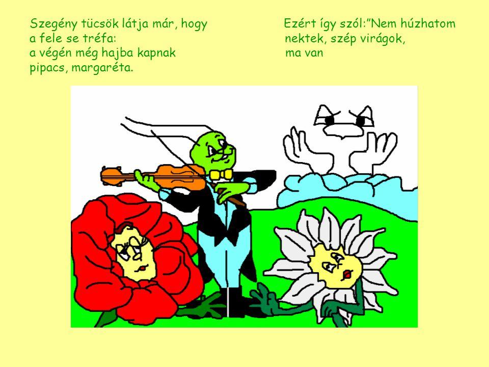 """Szegény tücsök látja már, hogy Ezért így szól:""""Nem húzhatom a fele se tréfa: nektek, szép virágok, a végén még hajba kapnak pipacs, margaréta."""