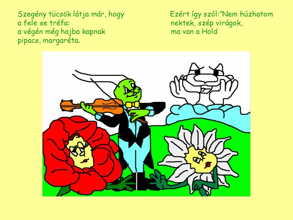 """Szegény tücsök látja már, hogy Ezért így szól:""""Nem húzhatom a fele se tréfa: nektek, szép virágok, a végén még hajba kapnak ma van pipacs, margaréta."""