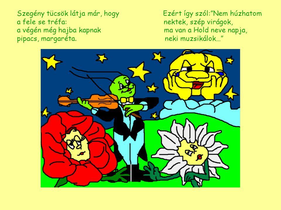 """Szegény tücsök látja már, hogy Ezért így szól:""""Nem húzhatom a fele se tréfa: nektek, szép virágok, a végén még hajba kapnak ma van a Hold neve napja,"""
