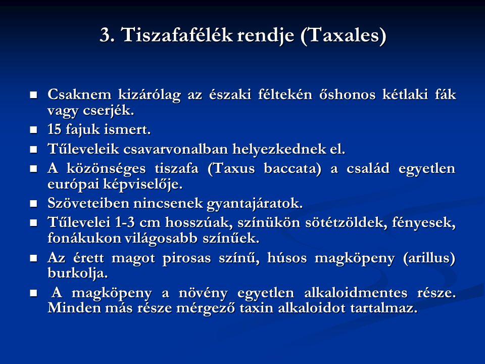 3. Tiszafafélék rendje (Taxales) Csaknem kizárólag az északi féltekén őshonos kétlaki fák vagy cserjék. Csaknem kizárólag az északi féltekén őshonos k