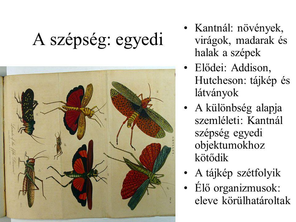 A szépség: egyedi Kantnál: növények, virágok, madarak és halak a szépek Elődei: Addison, Hutcheson: tájkép és látványok A különbség alapja szemléleti: Kantnál szépség egyedi objektumokhoz kötődik A tájkép szétfolyik Élő organizmusok: eleve körülhatároltak