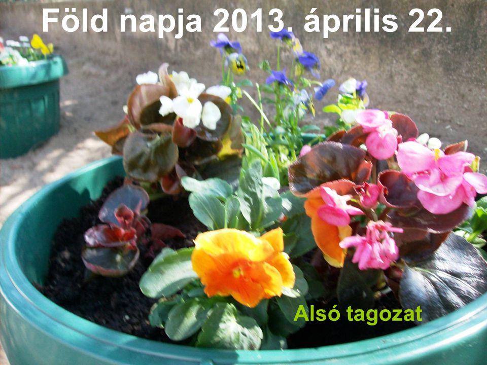 Föld napja 2013. április 22. Alsó tagozat