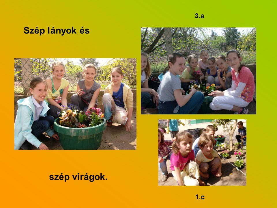 3.a 1.c Szép lányok és szép virágok.