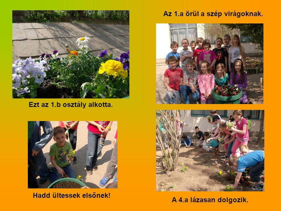 Az 1.a örül a szép virágoknak.A 4.a lázasan dolgozik.