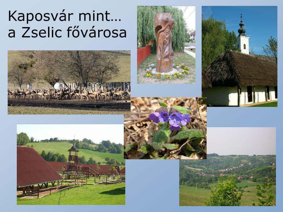 Kaposvár mint… a Zselic fővárosa