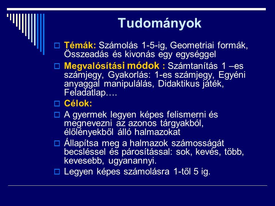 Tudományok  Témák: Számolás 1-5-ig, Geometriai formák, Összeadás és kivonás egy egységgel  Megvalósítás i módok : Számtanítás 1 –es számjegy, Gyakor