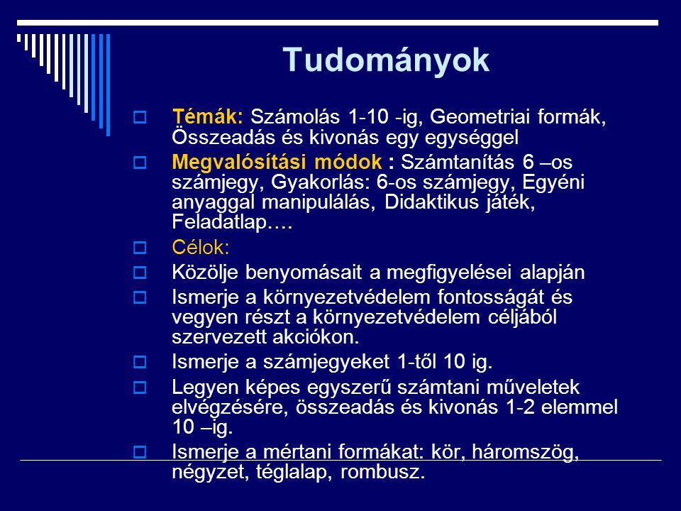 Tudományok  Témák: Számolás 1-10 -ig, Geometriai formák, Összeadás és kivonás egy egységgel  Megvalósítási módok : Számtanítás 6 –os számjegy, Gyako