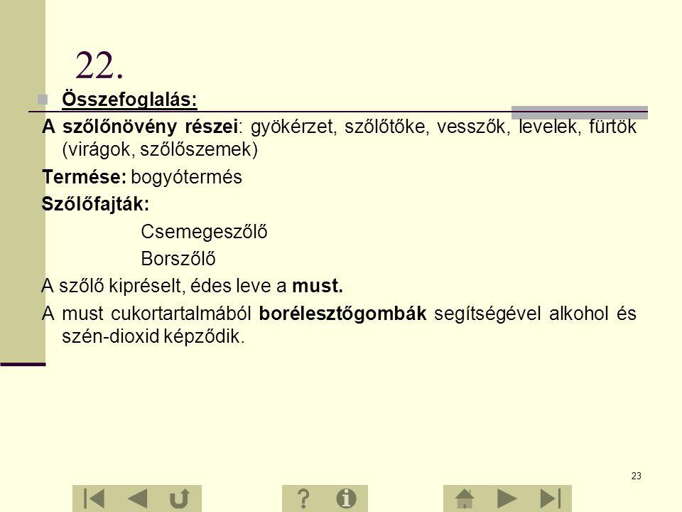 22 21.Érdekességek A világon sok tízezer szőlőfajtát termesztenek. Ezek közül a magyar Mathiász János harmincöt szőlőfajtát nemesített. Az édességek í
