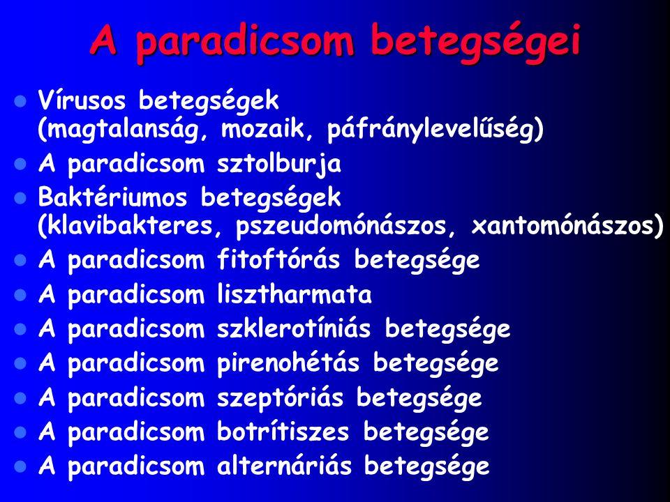 A paradicsom betegségei Vírusos betegségek (magtalanság, mozaik, páfránylevelűség) A paradicsom sztolburja Baktériumos betegségek (klavibakteres, psze