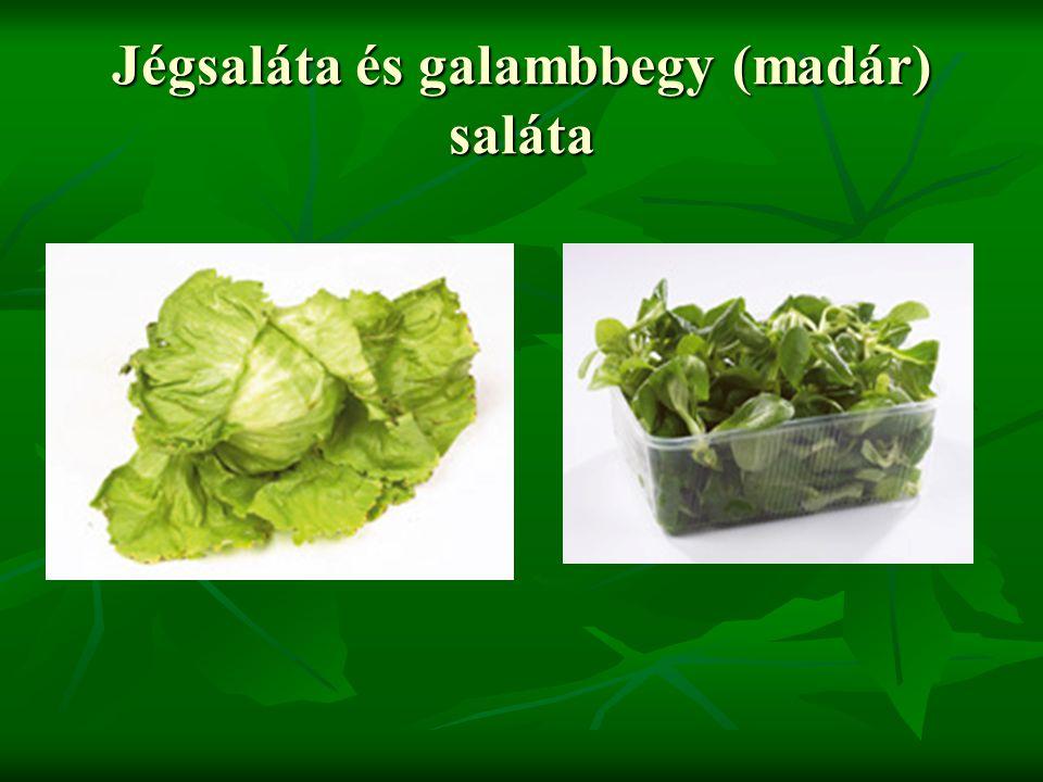 Jégsaláta és galambbegy (madár) saláta