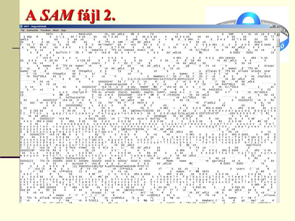A SAM fájl 2.