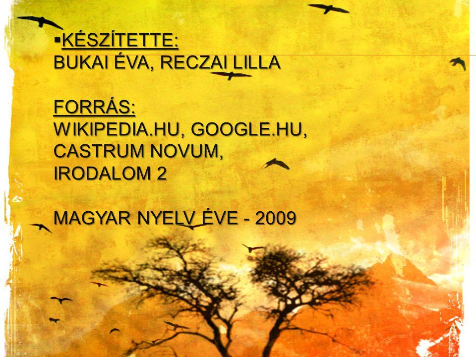  KÉSZÍTETTE: BUKAI ÉVA, RECZAI LILLA FORRÁS: WIKIPEDIA.HU, GOOGLE.HU, CASTRUM NOVUM, IRODALOM 2 MAGYAR NYELV ÉVE - 2009