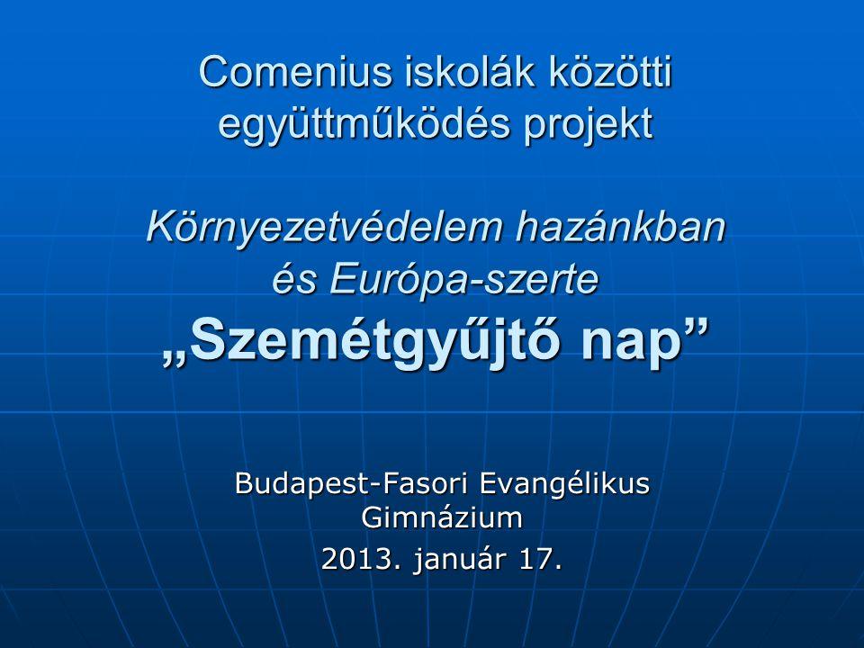 """Comenius iskolák közötti együttműködés projekt Környezetvédelem hazánkban és Európa-szerte """"Szemétgyűjtő nap Budapest-Fasori Evangélikus Gimnázium 2013."""