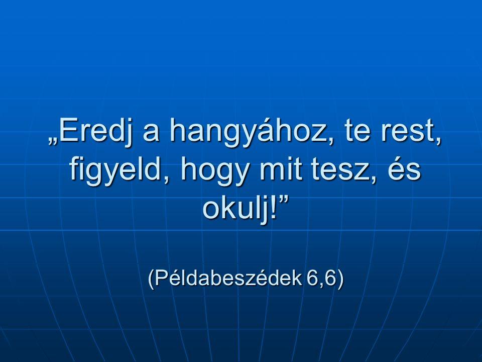 """""""Eredj a hangyához, te rest, figyeld, hogy mit tesz, és okulj! (Példabeszédek 6,6)"""