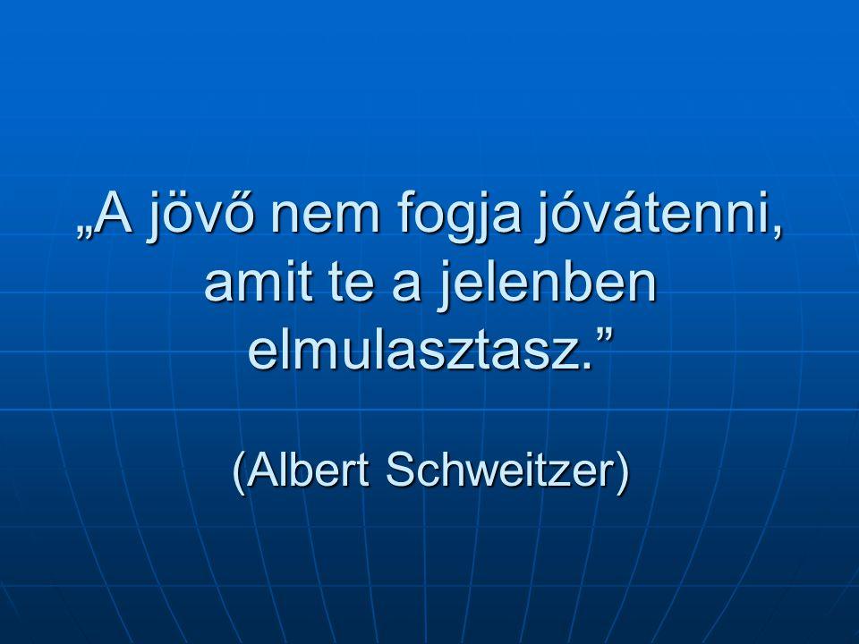 """""""A jövő nem fogja jóvátenni, amit te a jelenben elmulasztasz. (Albert Schweitzer)"""