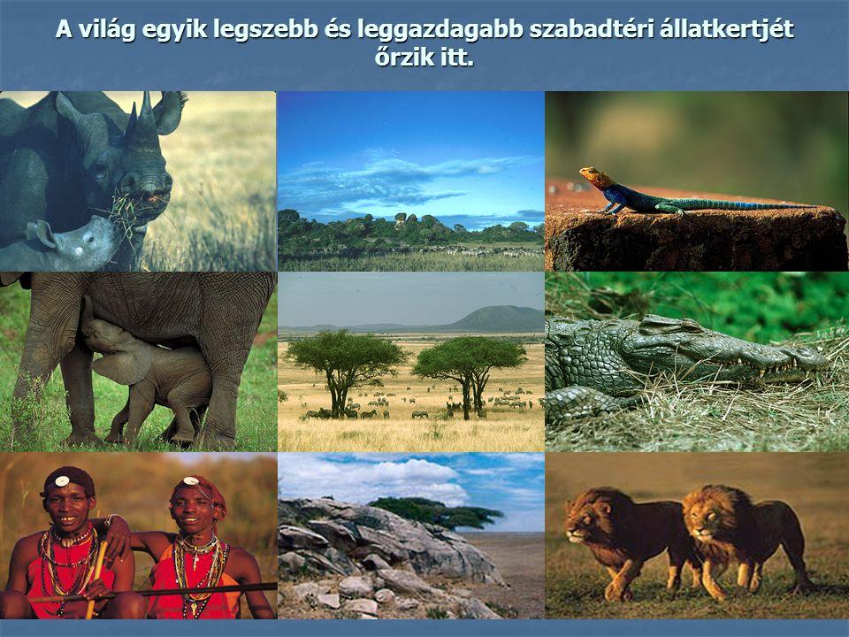 A világ egyik legszebb és leggazdagabb szabadtéri állatkertjét őrzik itt.