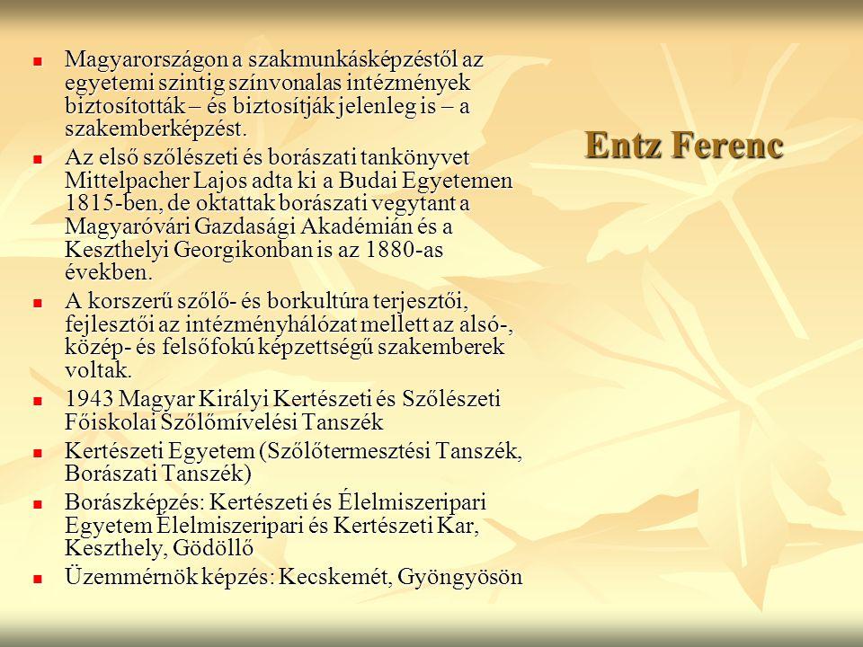 Entz Ferenc Magyarországon a szakmunkásképzéstől az egyetemi szintig színvonalas intézmények biztosították – és biztosítják jelenleg is – a szakemberk