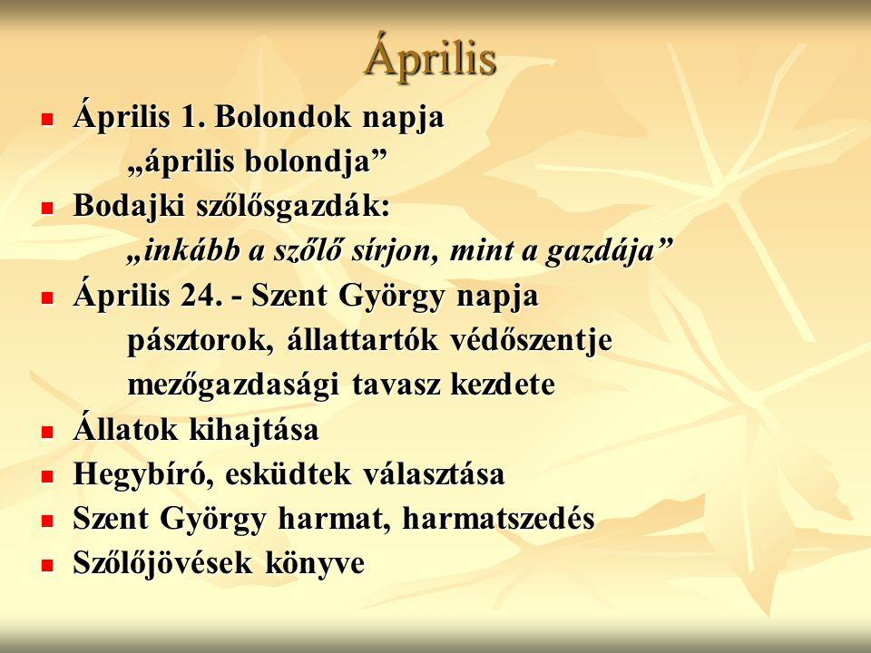 """Április Április 1. Bolondok napja Április 1. Bolondok napja """"április bolondja"""" Bodajki szőlősgazdák: Bodajki szőlősgazdák: """"inkább a szőlő sírjon, min"""
