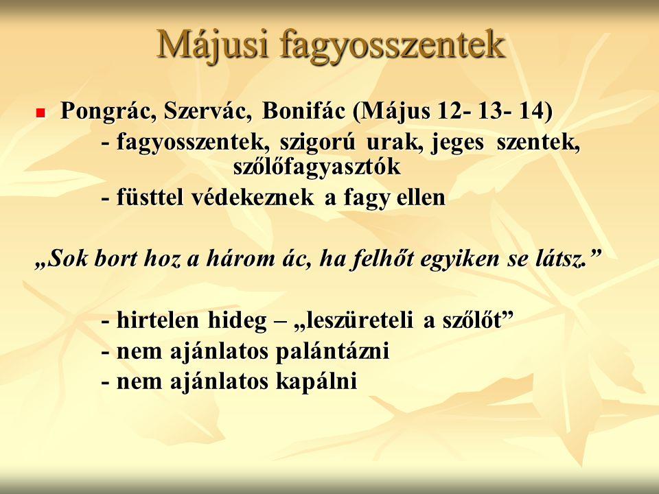 Májusi fagyosszentek Pongrác, Szervác, Bonifác (Május 12- 13- 14) Pongrác, Szervác, Bonifác (Május 12- 13- 14) - fagyosszentek, szigorú urak, jeges sz