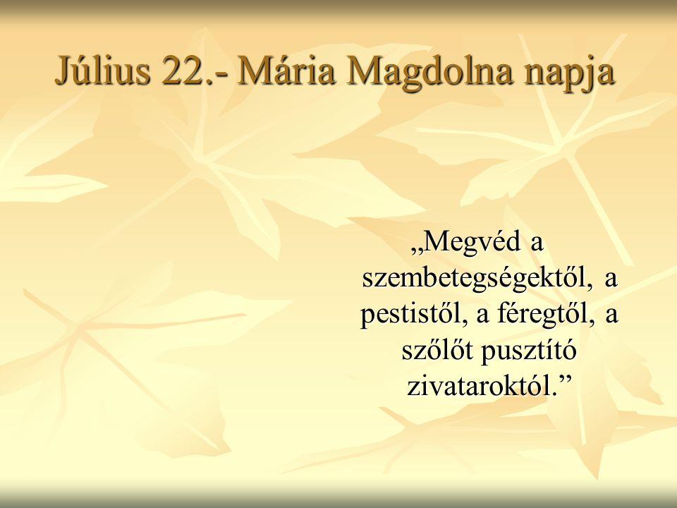 """Július 22.- Mária Magdolna napja """"Megvéd a szembetegségektől, a pestistől, a féregtől, a szőlőt pusztító zivataroktól."""""""