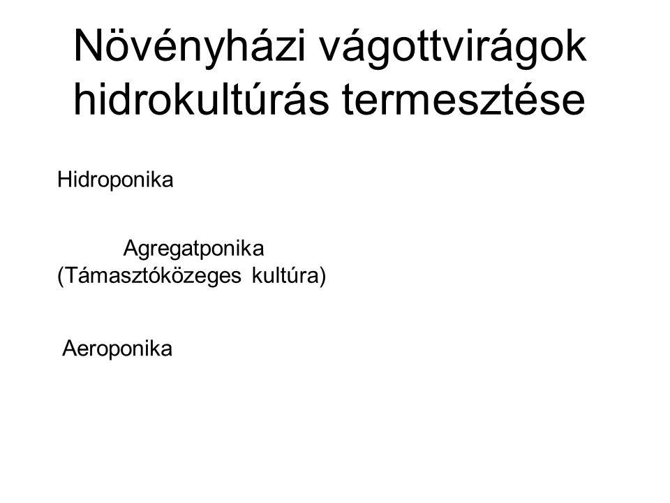 Növényházi vágottvirágok hidrokultúrás termesztése Hidroponika Agregatponika (Támasztóközeges kultúra) Aeroponika