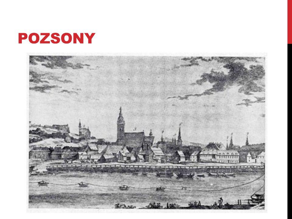 KÖZÉLETI TEVÉKENYSÉGE 1773-ban megvált a testőrségtől, a magyar protestánsok ügyvivője lett a királyi udvarnál.
