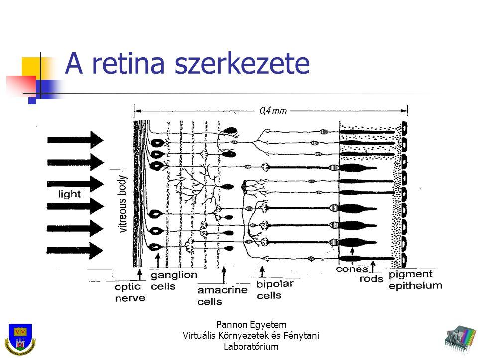 Pannon Egyetem Virtuális Környezetek és Fénytani Laboratórium A retina szerkezete