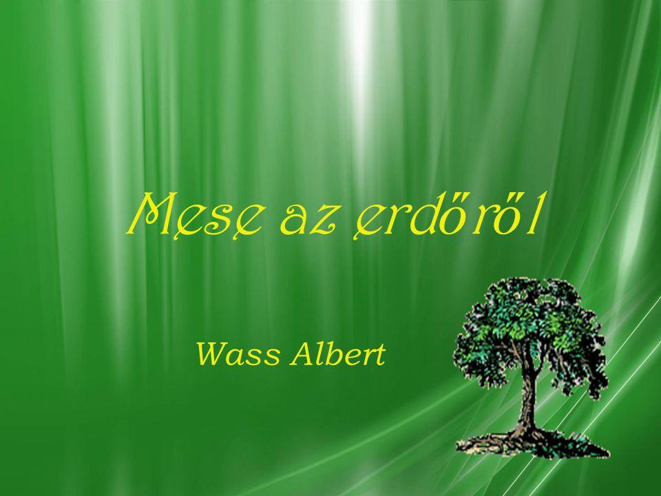 Mese az erd ő r ő l Wass Albert