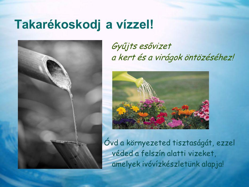 Takarékoskodj a vízzel! Gyűjts esővizet a kert és a virágok öntözéséhez! Óvd a környezeted tisztaságát, ezzel véded a felszín alatti vizeket, amelyek