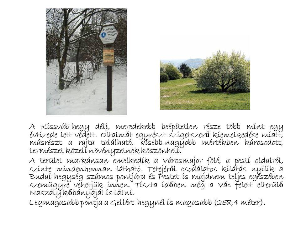 A 7,2 hektáros természetvédelmi terület, a 259 méter magas dombtet ő vel, a történelem állandó tanúja volt. A hegyet 1950-ben Martinovics Ignácról nev