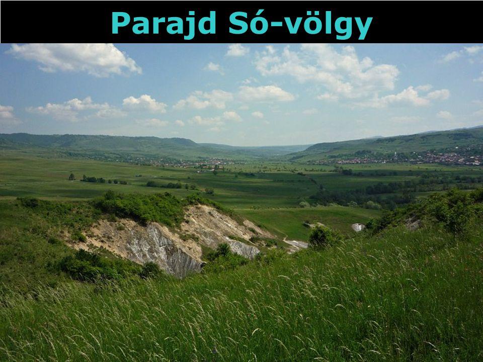 Parajd Só-völgy