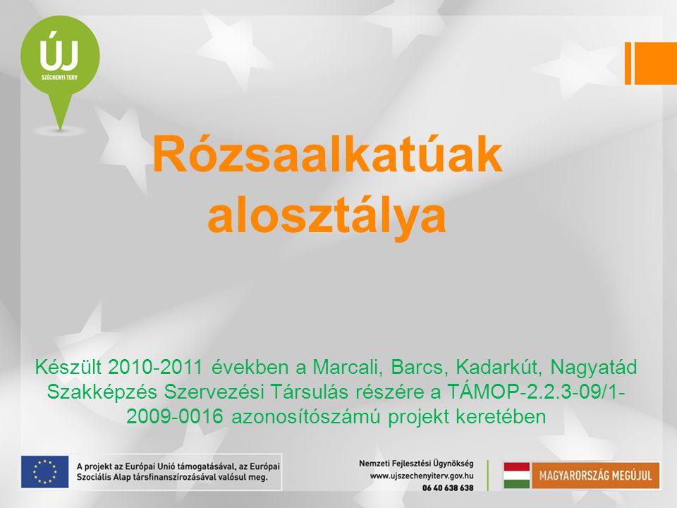 Rózsaalkatúak alosztálya Készült 2010-2011 években a Marcali, Barcs, Kadarkút, Nagyatád Szakképzés Szervezési Társulás részére a TÁMOP-2.2.3-09/1- 200