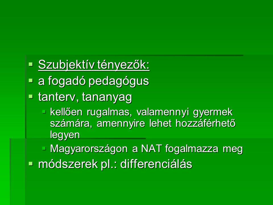 Szubjektív tényezők:  a fogadó pedagógus  tanterv, tananyag  kellően rugalmas, valamennyi gyermek számára, amennyire lehet hozzáférhető legyen  Magyarországon a NAT fogalmazza meg  módszerek pl.: differenciálás