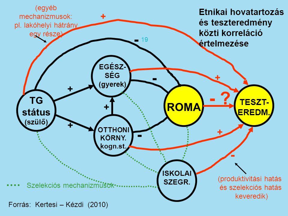 TG státus (szülő) ROMA + + - .+ + + + - - - (egyéb mechanizmusok: pl.