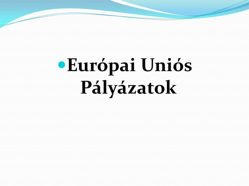 Helyzetkép 2002, 2008 Implicit utalás a kompetenciák fejlesztésére Explicit utalás a kompetenciák fejlesztésére Explicit utalás a kulcskompetenciák fejlesztésére Eurydice, the information network on education in Europe 2002 NAT 2007