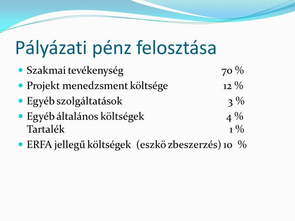 Pályázati pénz felosztása Szakmai tevékenység 70 % Projekt menedzsment költsége 12 % Egyéb szolgáltatások 3 % Egyéb általános költségek 4 % Tartalék 1