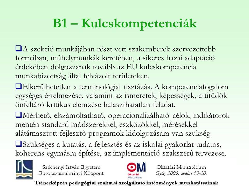 B1 – Kulcskompetenciák  A szekció munkájában részt vett szakemberek szervezettebb formában, mûhelymunkák keretében, a sikeres hazai adaptáció érdekében dolgozzanak tovább az EU kulcskompetencia munkabizottság által felvázolt területeken.