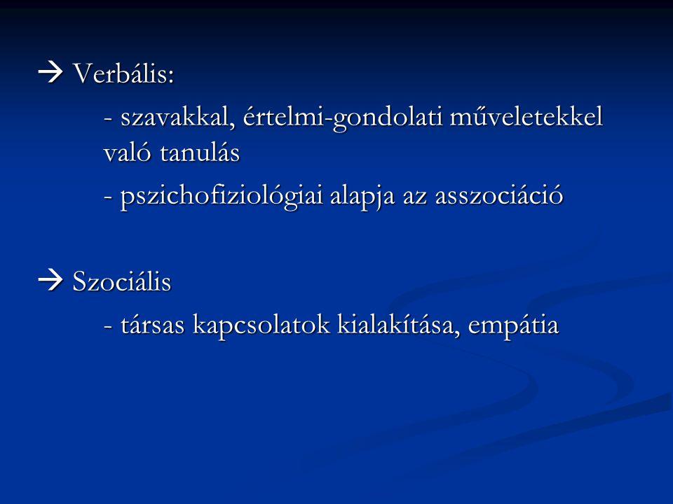  Verbális: - szavakkal, értelmi-gondolati műveletekkel való tanulás - pszichofiziológiai alapja az asszociáció  Szociális - társas kapcsolatok kiala