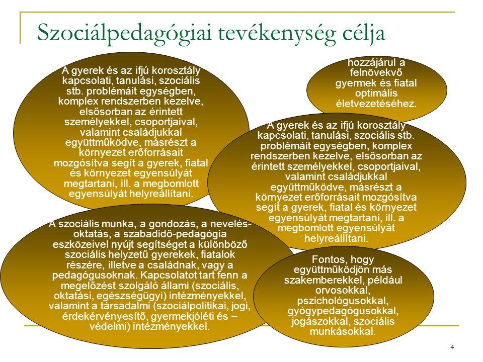 4 Szociálpedagógiai tevékenység célja A gyerek és az ifjú korosztály kapcsolati, tanulási, szociális stb. problémáit egységben, komplex rendszerben ke