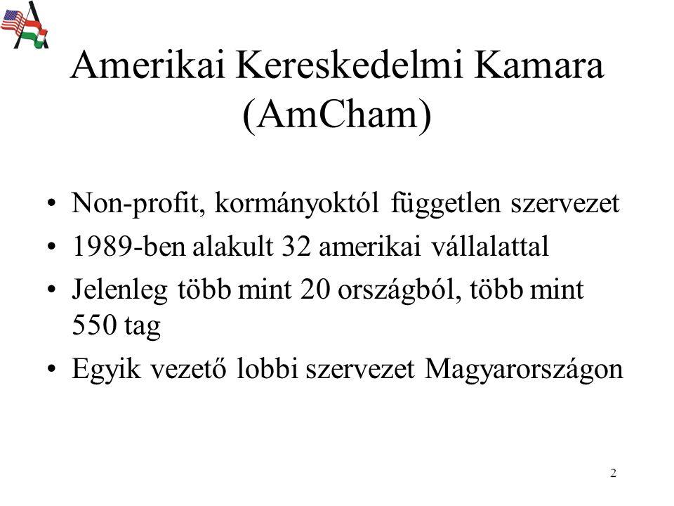 2 Non-profit, kormányoktól független szervezet 1989-ben alakult 32 amerikai vállalattal Jelenleg több mint 20 országból, több mint 550 tag Egyik vezető lobbi szervezet Magyarországon Amerikai Kereskedelmi Kamara (AmCham)