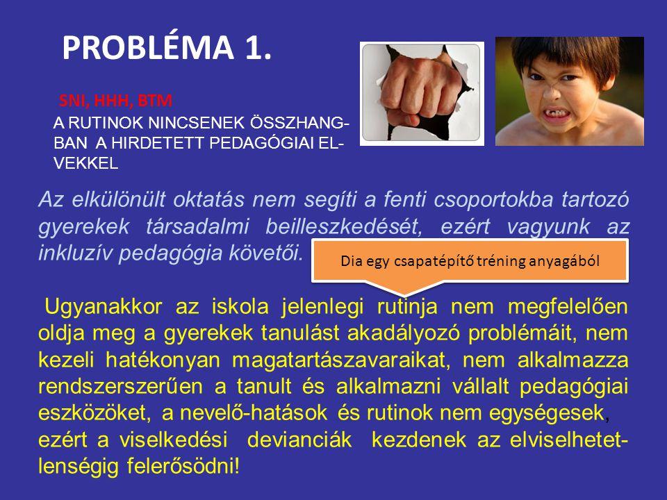PROBLÉMA 1. SNI, HHH, BTM Az elkülönült oktatás nem segíti a fenti csoportokba tartozó gyerekek társadalmi beilleszkedését, ezért vagyunk az inkluzív