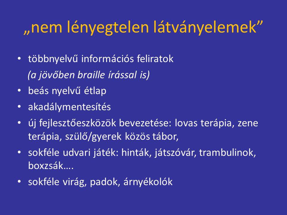 """""""nem lényegtelen látványelemek"""" többnyelvű információs feliratok (a jövőben braille írással is) beás nyelvű étlap akadálymentesítés új fejlesztőeszköz"""