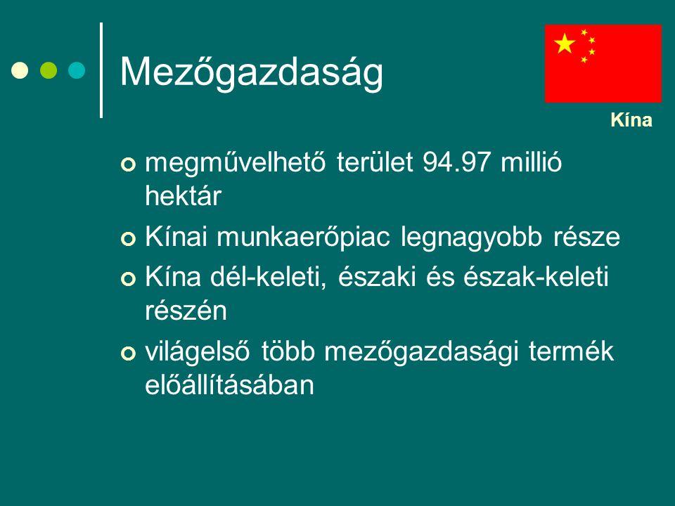 Mezőgazdaság megművelhető terület 94.97 millió hektár Kínai munkaerőpiac legnagyobb része Kína dél-keleti, északi és észak-keleti részén világelső több mezőgazdasági termék előállításában Kína