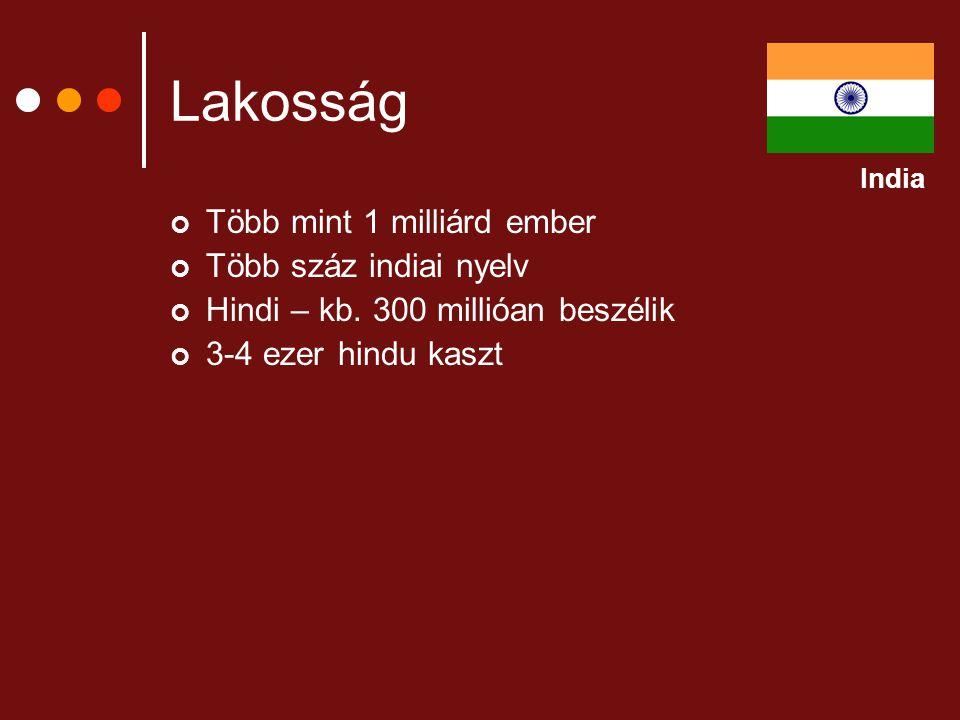 Lakosság Több mint 1 milliárd ember Több száz indiai nyelv Hindi – kb. 300 millióan beszélik 3-4 ezer hindu kaszt India