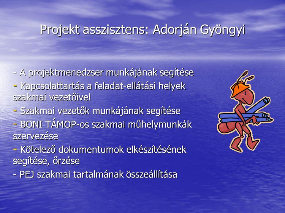 Projekt asszisztens: Adorján Gyöngyi - A projektmenedzser munkájának segítése - Kapcsolattartás a feladat-ellátási helyek szakmai vezetőivel - Szakmai vezetők munkájának segítése - BONI TÁMOP-os szakmai műhelymunkák szervezése - Kötelező dokumentumok elkészítésének segítése, őrzése - PEJ szakmai tartalmának összeállítása