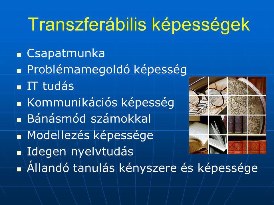 Transzferábilis képességek Csapatmunka Problémamegoldó képesség IT tudás Kommunikációs képesség Bánásmód számokkal Modellezés képessége Idegen nyelvtudás Állandó tanulás kényszere és képessége