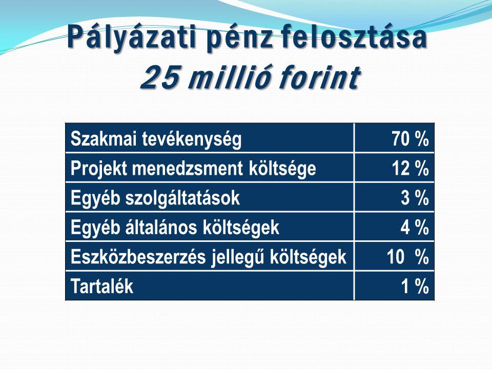 Pályázati pénz felosztása 25 millió forint Szakmai tevékenység70 % Projekt menedzsment költsége12 % Egyéb szolgáltatások3 % Egyéb általános költségek4 % Eszközbeszerzés jellegű költségek10 % Tartalék1 %